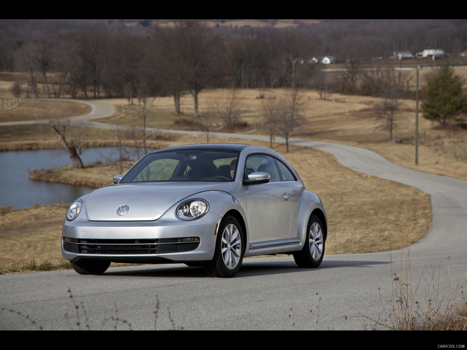Volkswagen Beetle TDI photo 134813