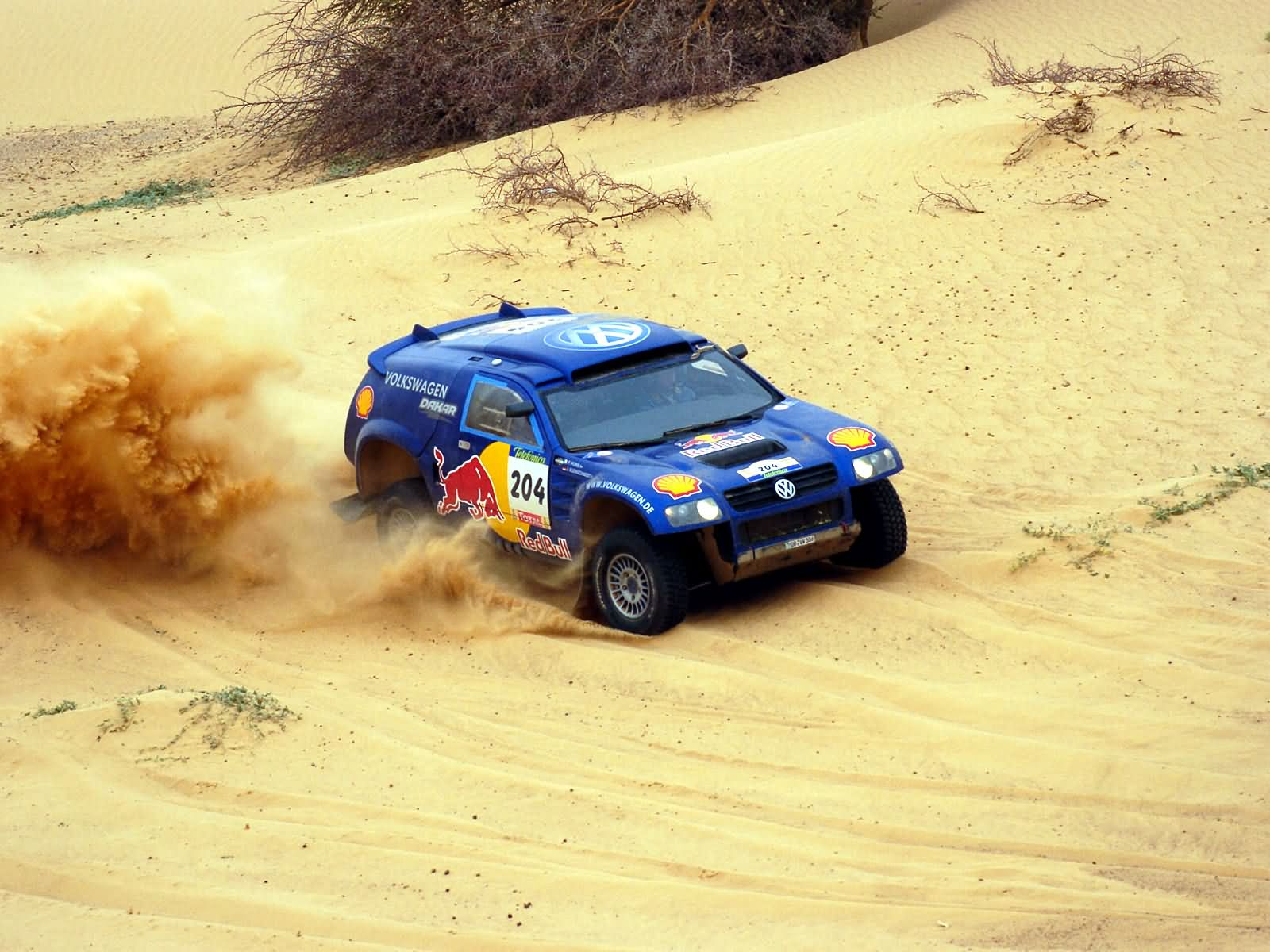 Volkswagen Race-Touareg photo 17055