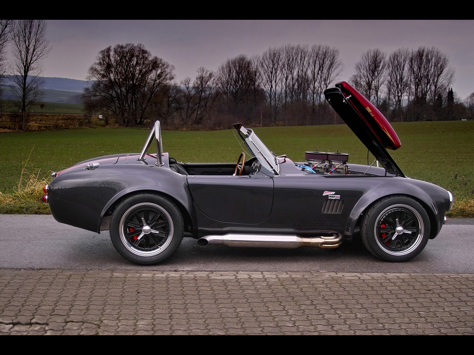 Weineck Cobra 780 cui Limited Edition photo 31037